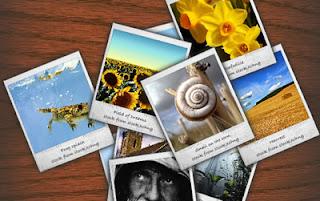 fotogallery in flash in ricordo della polaroid