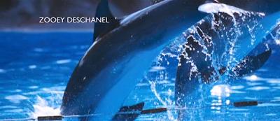 zooey delfin