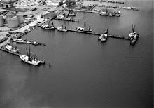 Standard Docks