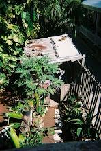 The garden garage.