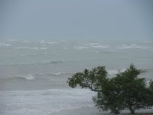 whitecaps from Ike