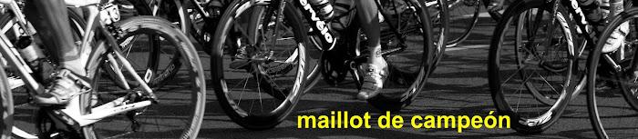 Maillot de campeon