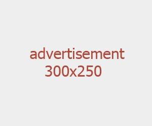 320x250 ads