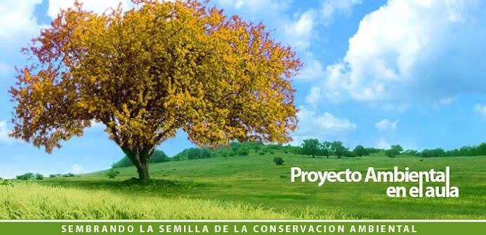 Proyecto Ambiental dentro del Aula