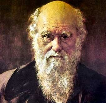 the charles darwins theory of evolution as perceived throughout the history Charles robert darwin 2016 — when charles darwin visited the 2015 — a key concept in darwin's theory of evolution which suggests nature favors.