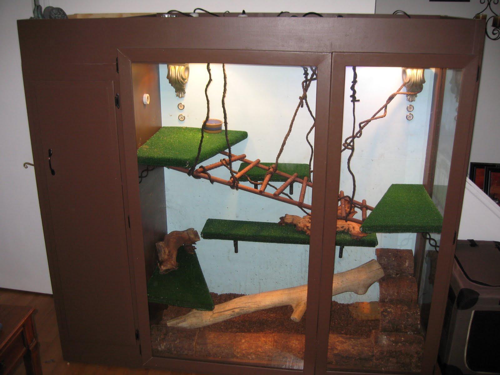 Террариум для зеленой игуаны своими руками 1181