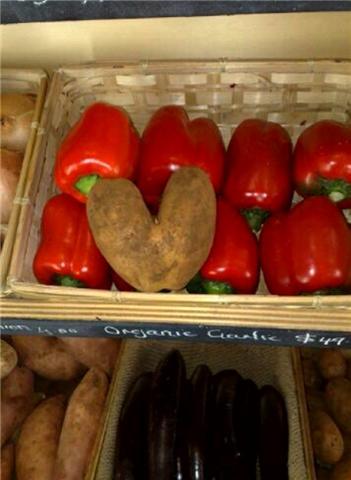 [love+potato.aspx]