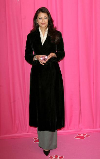 Aishwarya Rai Bachchan Pink Panter 2 Paris photocall