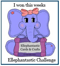 Ellephantastic Challenge