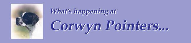 Corwyn Pointers