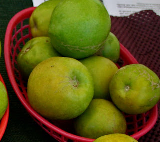 tunas fruit sapote fruit