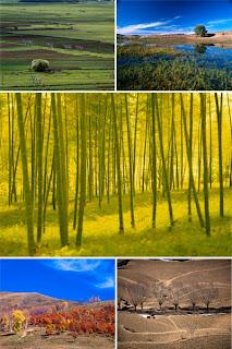 Высококачественные фотографии природы