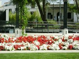 Jardim de Campo Maior