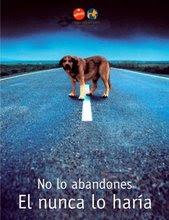 Os animais também têm sentimentos e também sofrem. Por isso não o abandones..