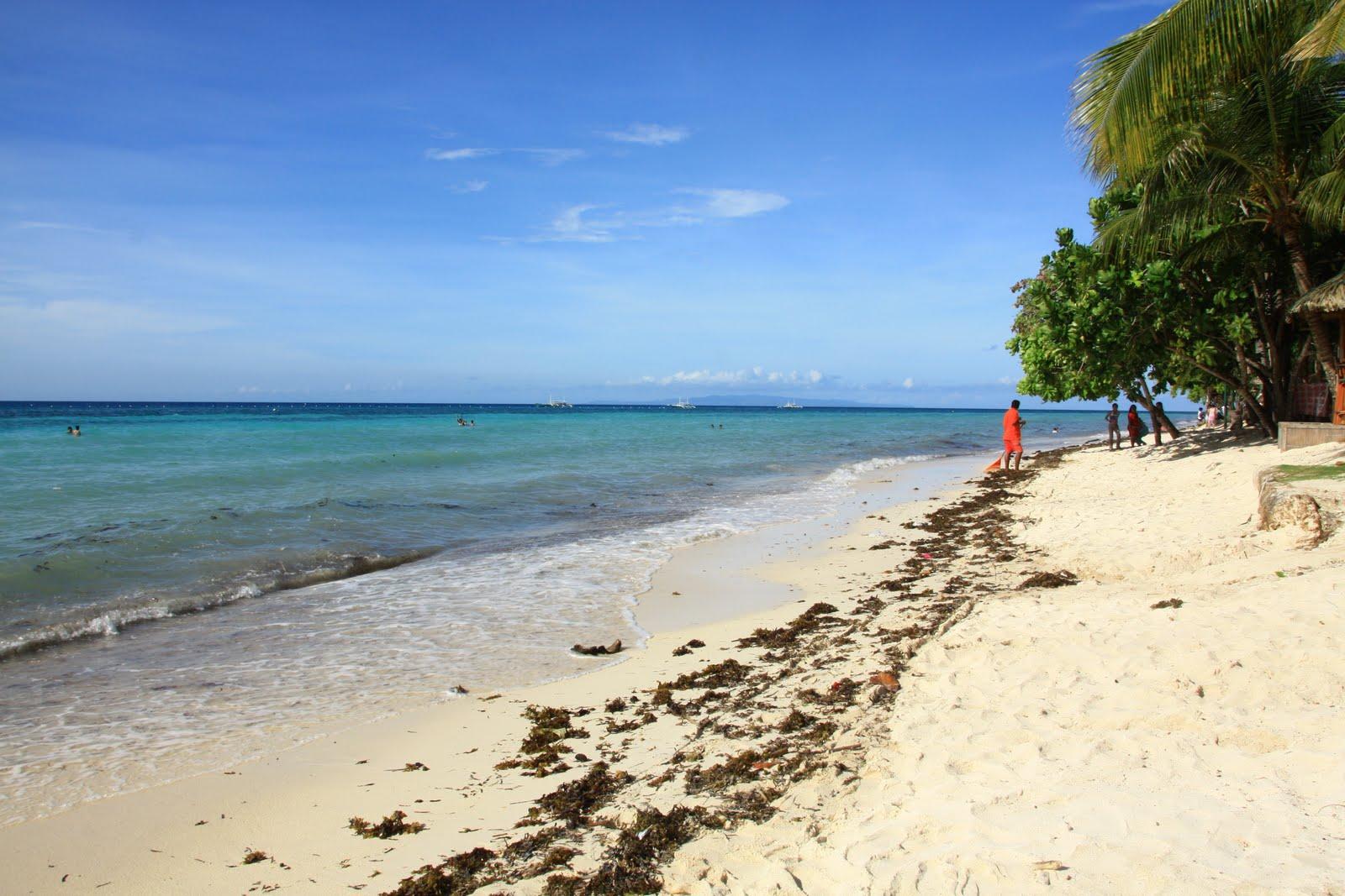 Dumaluan Beach Resort Reviews Photos