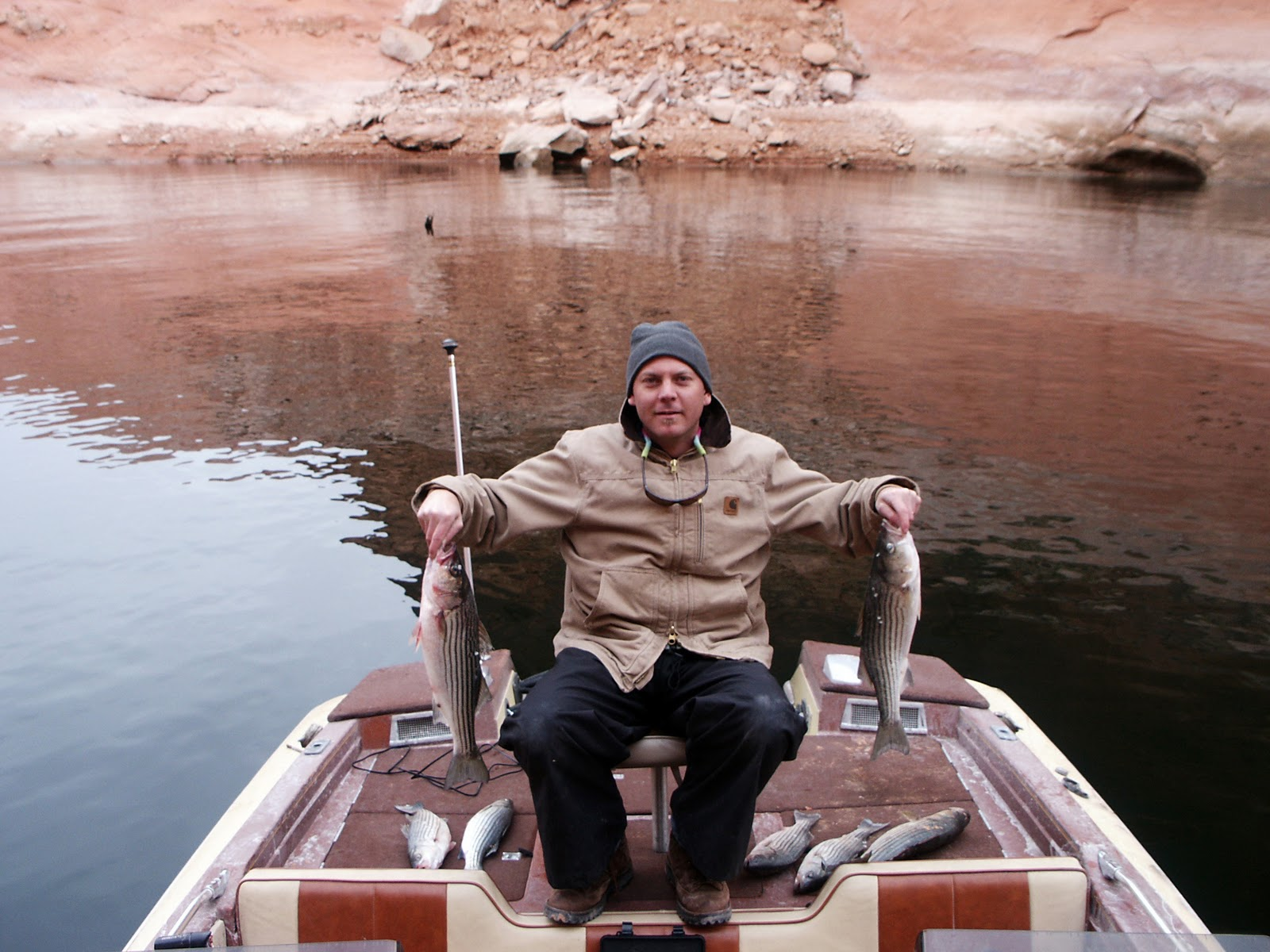 Backcountry utah 39 s outdoor adventure journal fast and for Lake powell fishing
