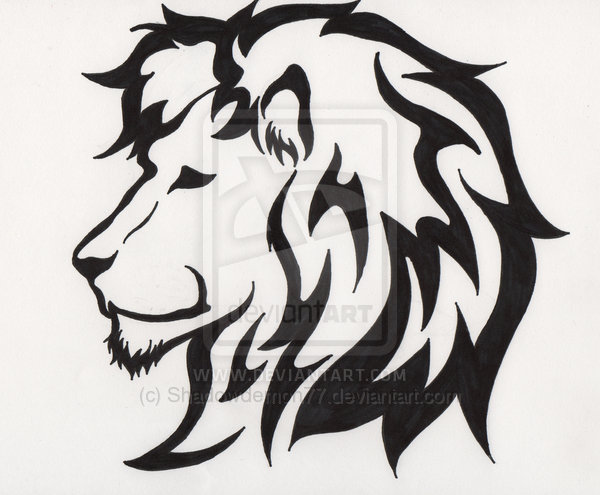lion tattoos for designs new