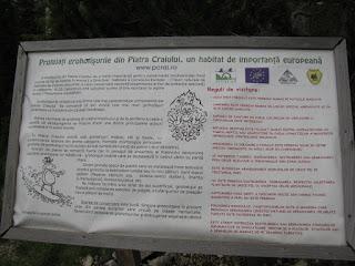 Panou informativ din Piatra Craiului