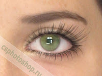 Кисти abr, ресницы от eyelash