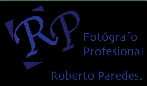Roberto Paredes: Camerino de arte.