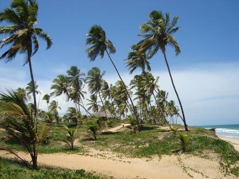 Ilha de Itaparica- Salvador-BA Brasil