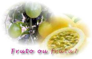 O fruto forma-se a partir do ovário maduro da flor e as sementes dos seus frutos.