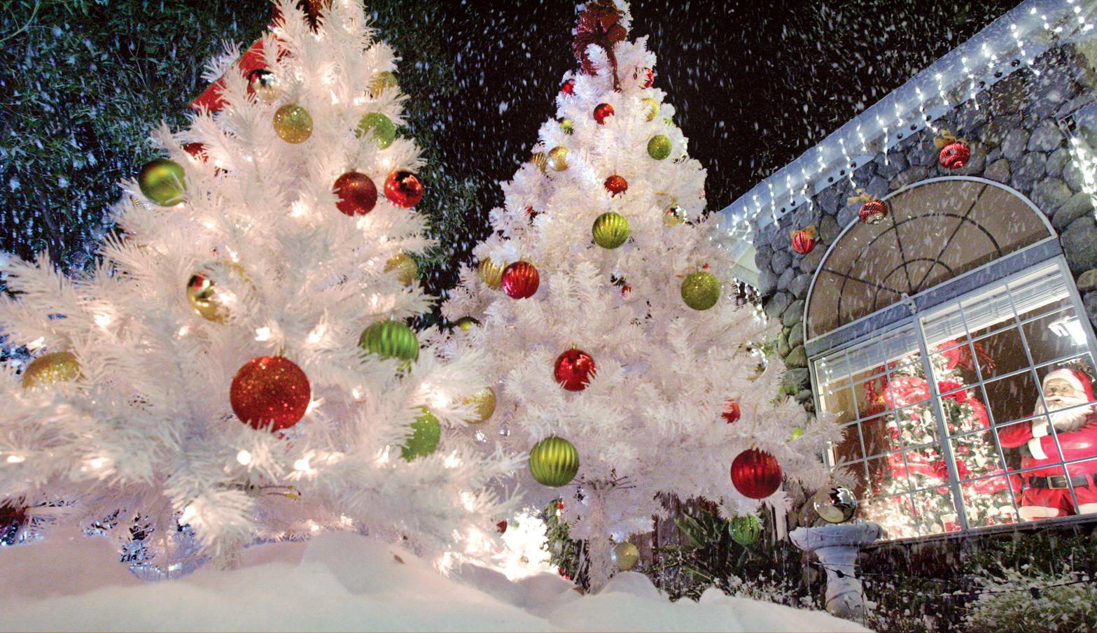 snapshots lighting up the holiday nights - Winter Wonderland Outdoor Christmas Decorations