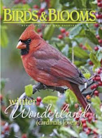Birds & Blooms Dec/Jan 2010
