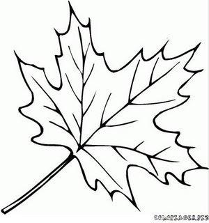 coloriage feuille foret 3%5B1%5D Outono para pintar... para crianças