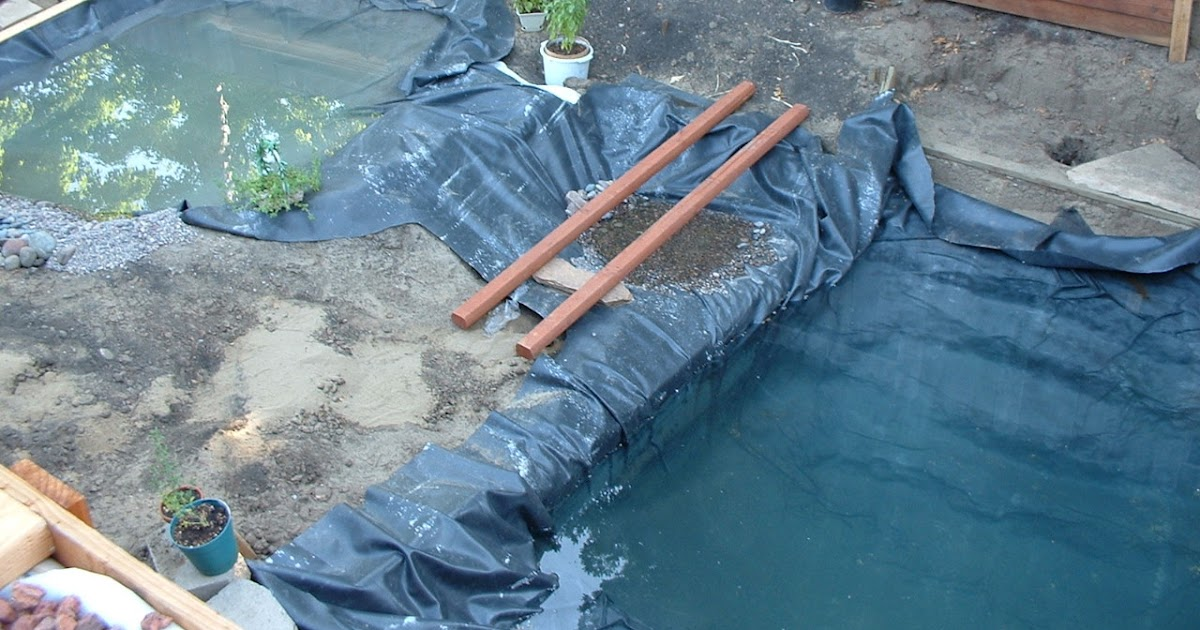 Swimming Pool Pond Liner : Swimming pool to natural pond installing a liner