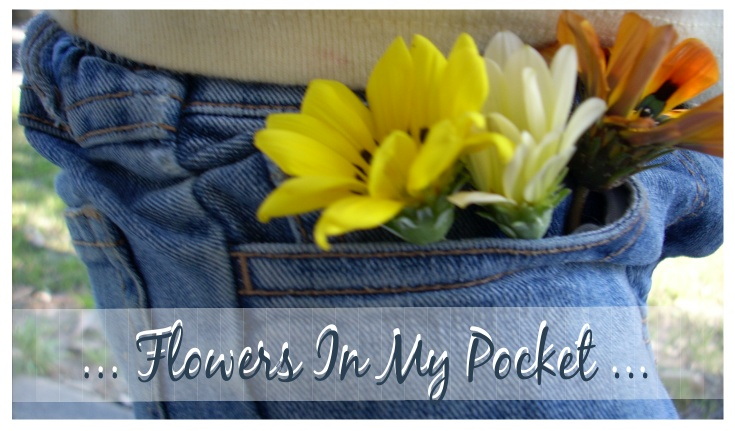 Flowers In My Pocket