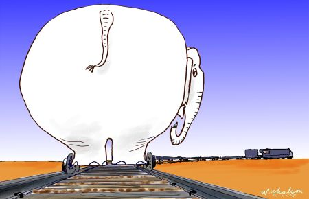 darwin ralil white elephant