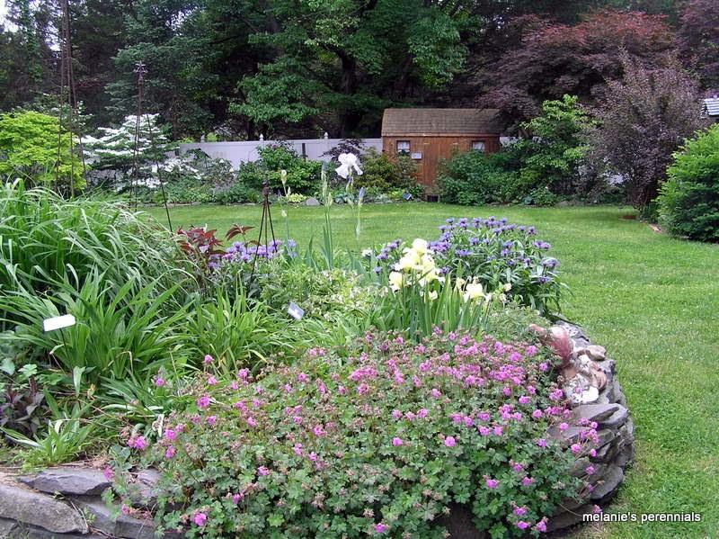 old country gardens heartbreaking beauty