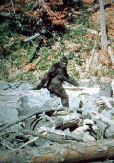 Know Your Cryptids: Bigfoot