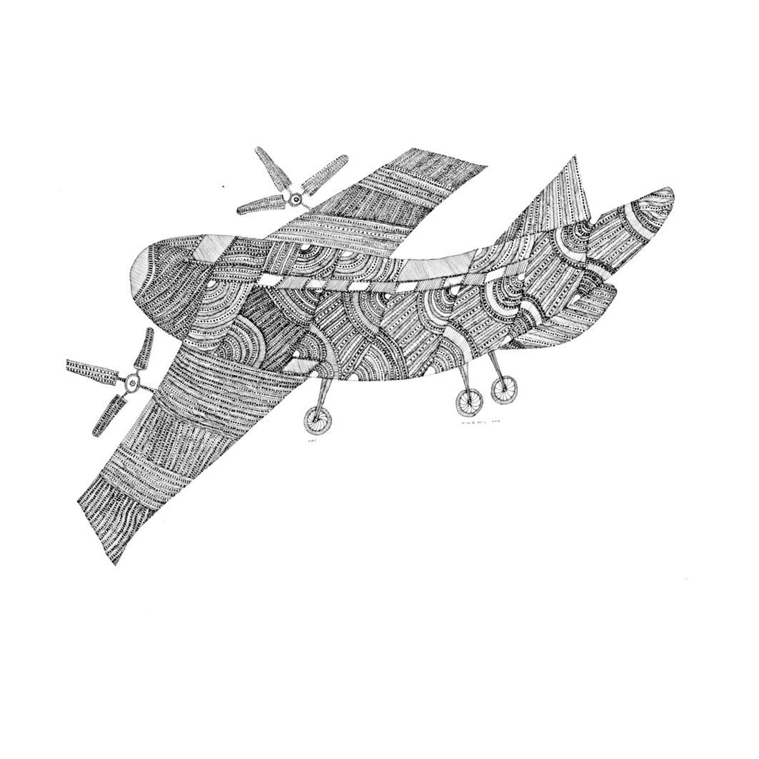 [jangarh+plane.jpg]