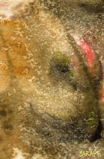 318 Mujer de piedra