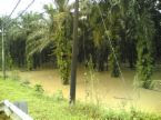 kesan banjir ke atas sektor pertanian
