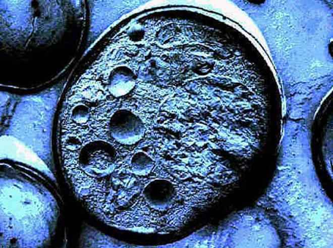 Ensayos con células madre