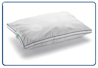 CleanRest Pillows