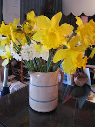 Daffodils from farmer's market