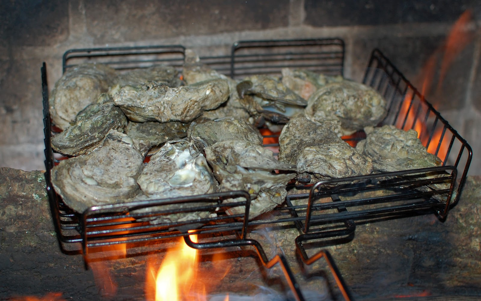 We Like to Cook!: Fire Roasted Oysters