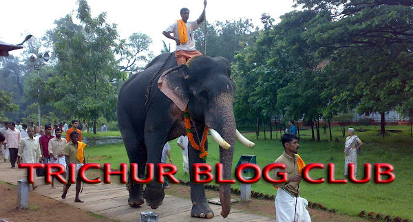 TRICHUR BLOG CLUB