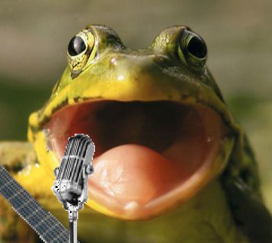 Jogo da Imagem do Google - Página 9 Boca_de_sapo_cantando