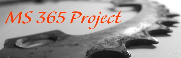 MS 365 Project