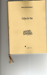 GOLPE DE ASA - 40 POEMAS (esgotado)