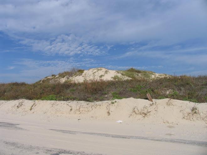 Texas Sand dune