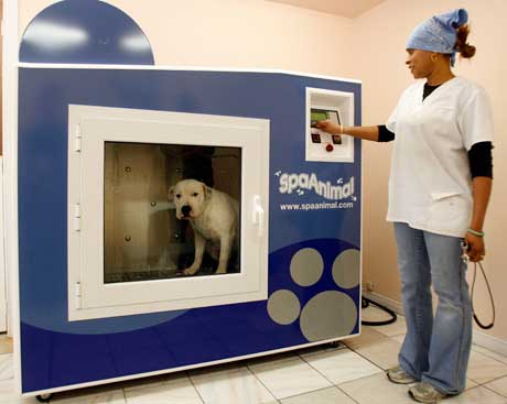 doggie washing machine