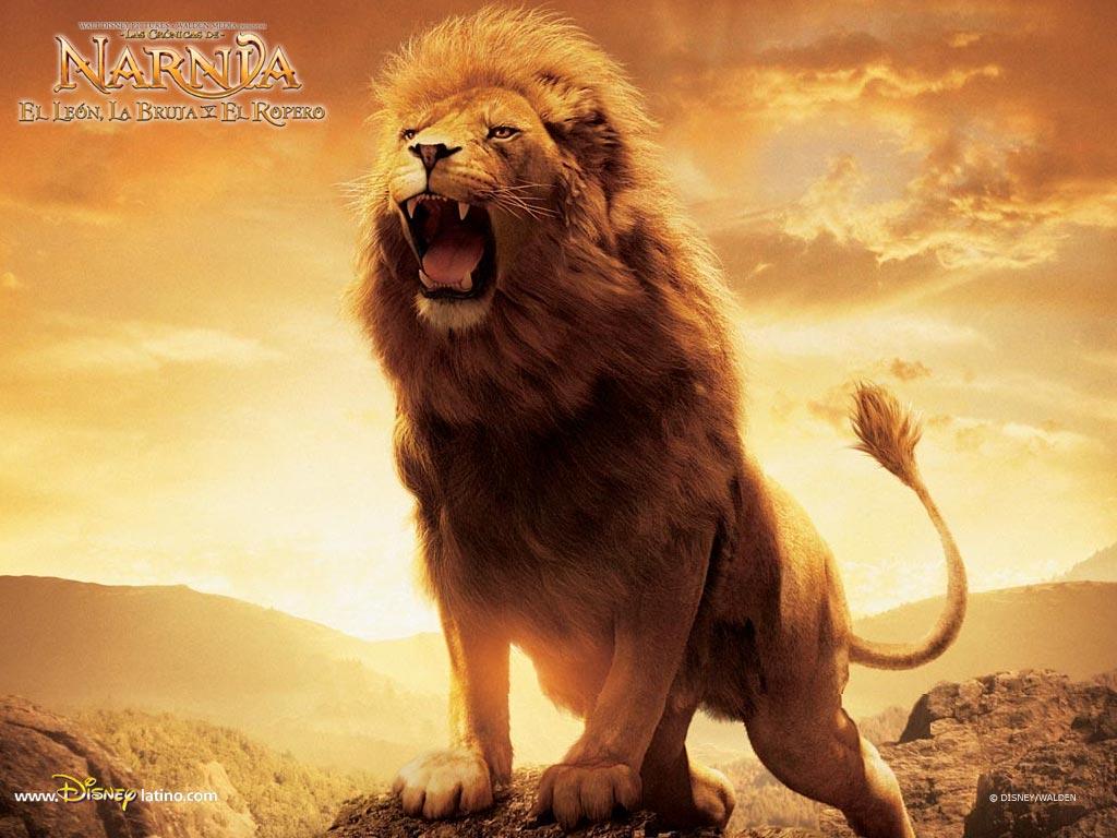 http://3.bp.blogspot.com/_NWT04IHLmpU/TTJt3KSKJ4I/AAAAAAAAADM/Q6MV2k7Xdo8/s1600/Aslan-Lion-2-The-Chronicles-of-Narnia-Wallpaper.jpeg