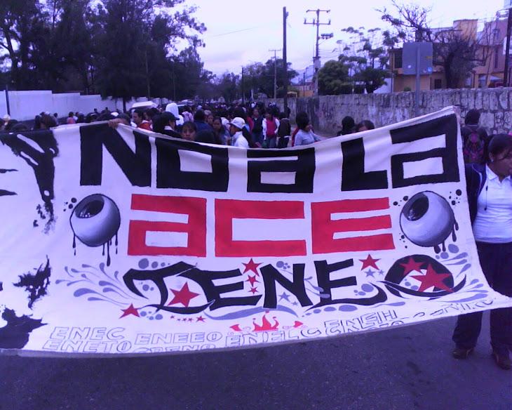 CENEO 2010