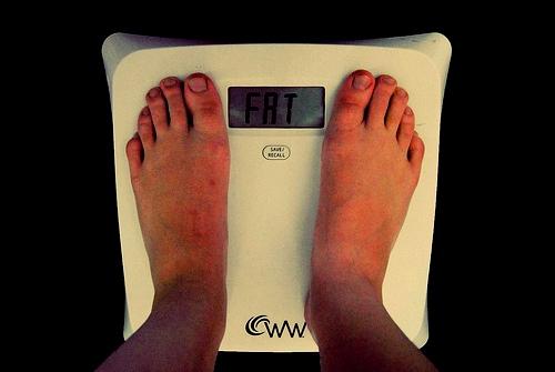 http://3.bp.blogspot.com/_NXs7diqTeWA/TDJg8KOu8YI/AAAAAAAASEA/XsBjm1WHWpk/s1600/fat.jpg